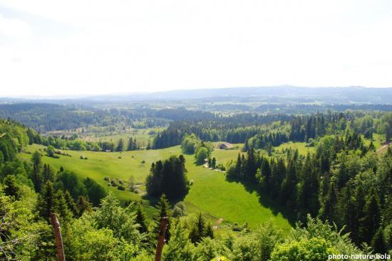 Randonnée au mont de Cicon